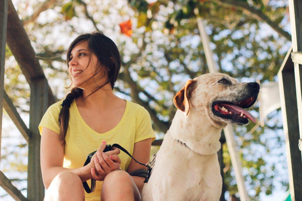 Dag Walkers Hampstead | Premier Dog Walkers