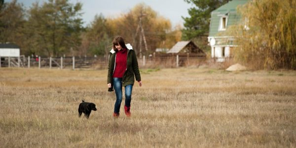 5 Things To Do With Your Dog On A Walk