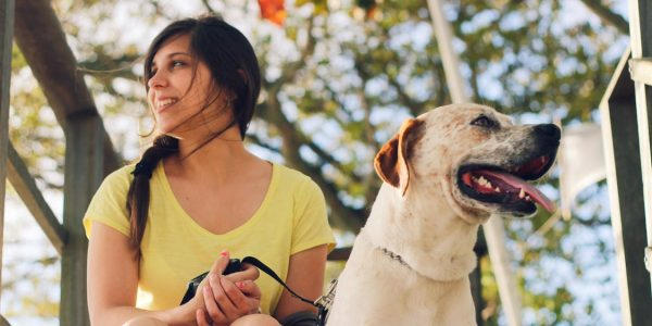 3 Reasons Your Dog Needs A Sitter