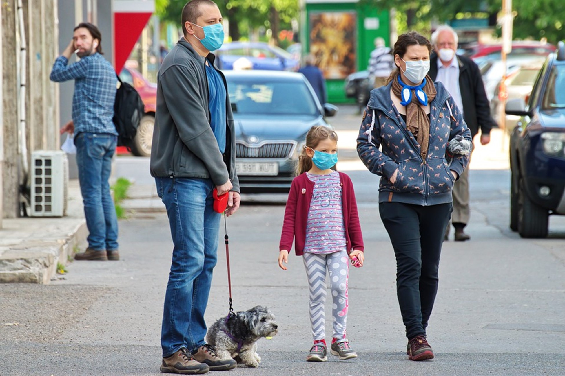 Effective Tips Dog Walkers Should Consider During the Pandemic